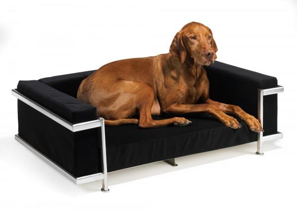 moderno dog bed